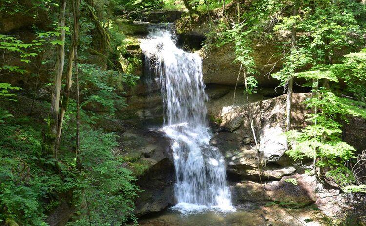 Allgaeu Bodensee Wasserfall Scheidegg Copyright Scheidegg Tourismus Web